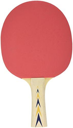 Schildkröt Donic 70-3029 - Tischtennis-Schläger, Serie 300, Noppen außen, mit Schwamm, 26cm