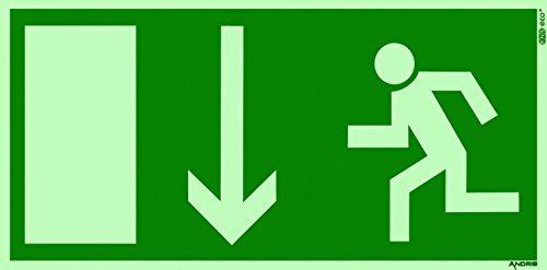 Fluchtweg / Notausgang Schild orig. ANDRIS® Pfeil unten DIN Kunststoffplatte lang nachleuchtend 300x150mm