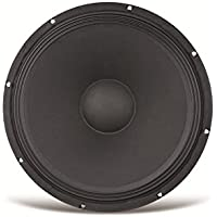 Kenford 4250019126864 PA 300 mm subwoofer 4 Ohm