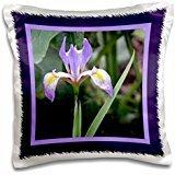 Flora Photography - Purple Tiger Iris - 16x16 inch Pillow Case (Iris Tiger)