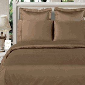 Duvet-set Salbei (Royal Hotel-8Full Größe bed-in-a-bag massivem Salbei 600-thread-count sibirischen Gänsedaunen Tröster 100Prozent Baumwolle–inkl. Blatt und Bettbezug Sets)