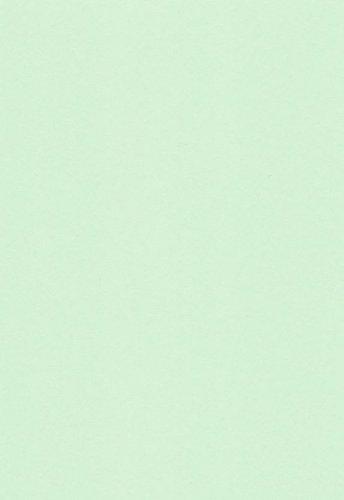 125 Blatt DIN A4 Hell-Grünes farbiges 160g/m² Office-Papier. Hochwertiges farbiges Spitzenpapier für Copy Laser Inkjet . Erstklassig für Flyer Newsletter Poster Faxeingänge Wichtige Mitteilungen Warnhinweise Ordnungssysteme Memos
