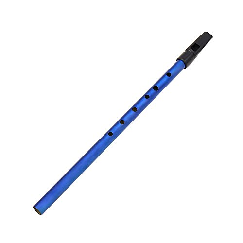 Kalaok Deluxe tradizionale Tin Penny Whistle 6 fori chiave Ottone Wind Music di D Blu