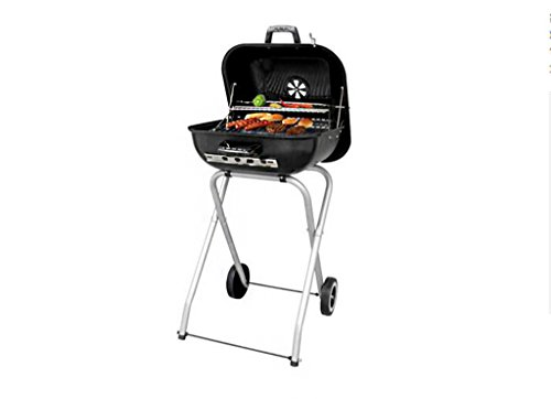 Barbecue Grill, Portable Barbecue Trolley BBQ Utensil Ausgestattet Mit Barbecue Tools