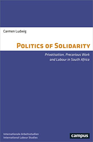 Politics of Solidarity: Privatisation, Precarious Work and Labour in South Africa (Labour Studies)