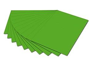 Folia 6155 - Papel fotográfico, 50 x 70 cm, 10 Hojas, Color Verde
