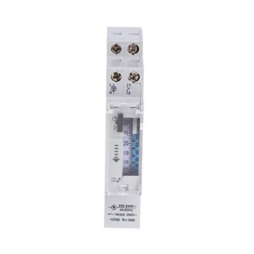 Runrain - Interruttore meccanico, timer programmabile 24 ore, DIN Rail, 110-240V, 16A