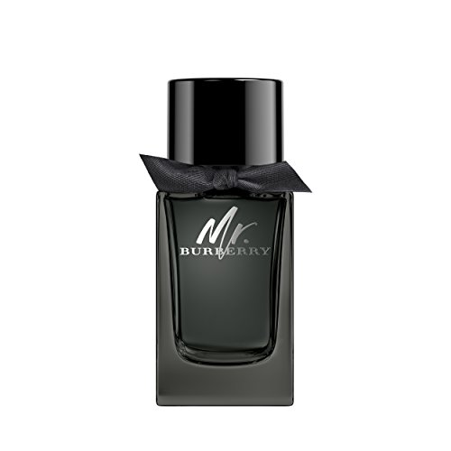 BURBERRY Burberry mr burberry eau de parfum 100 ml