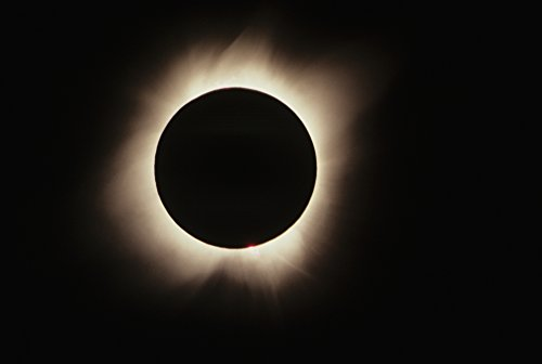Allan Seiden / Design Pics – Hawaii July 11 1991 Solar Eclipse Totality With Solar Flares. Photo Print (43,18 x 27,94 cm) (Solar-flare-design)