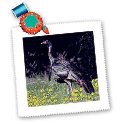 3dRose Wild Turkey Gobbler Platz Quilt Tabelle, 10von 25,4cm (Wild Turkey-shirt)