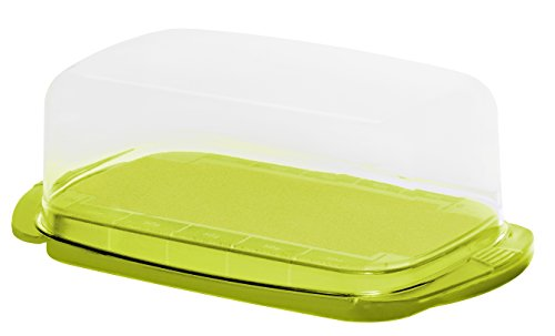 Rotho Fresh Butterdose, Kunststoff (BPA-frei), grün / transparent, (18 x9,5 x 6,5 cm) -