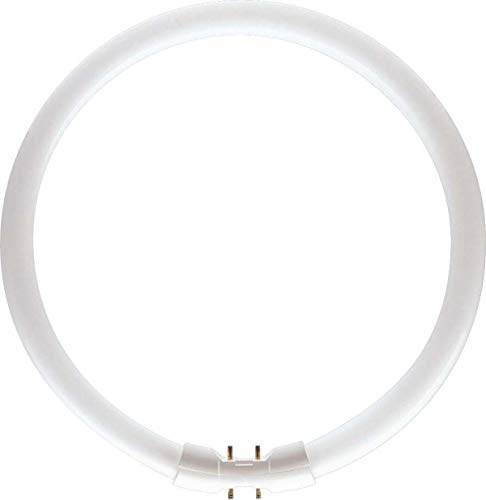 Tube Philips C 60 Master Tl5 2gx13 Circulaire 840 Fluo Watts Cc T5 jLqSUzMpVG