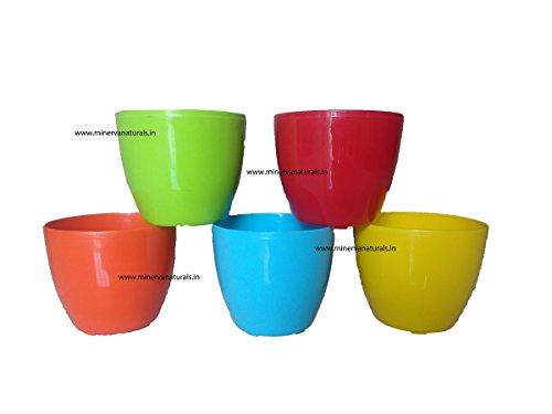 Malhotra Plastic Cool Pot (13cm, Pack of 5, Multicolour)