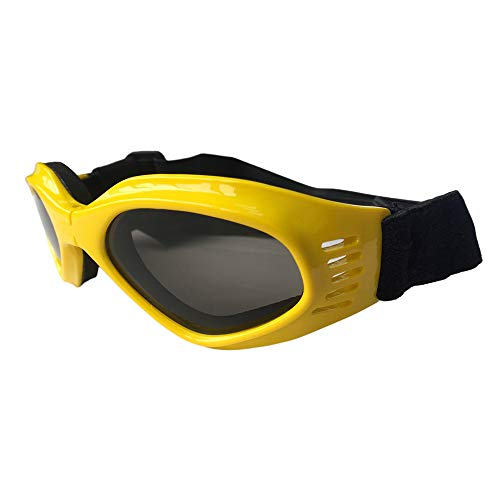 KOMNY Faltbare Haustierbrille Skibrille Haustier Hund Katze Brille Zubehör Großhandel Sonnenbrillen Hersteller, F (Brille Großhandel)
