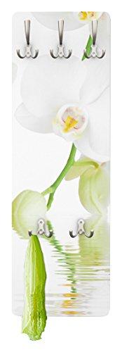 Apalis Orchideen Garderobe - Wellness Orchidee - Blumen Garderobe - Weiße Orchidee | Design Garderobe Garderobenpaneel Kleiderhaken Flurgarderobe Hakenleiste Holz Standgarderobe Hängegarderobe | 139x46cm