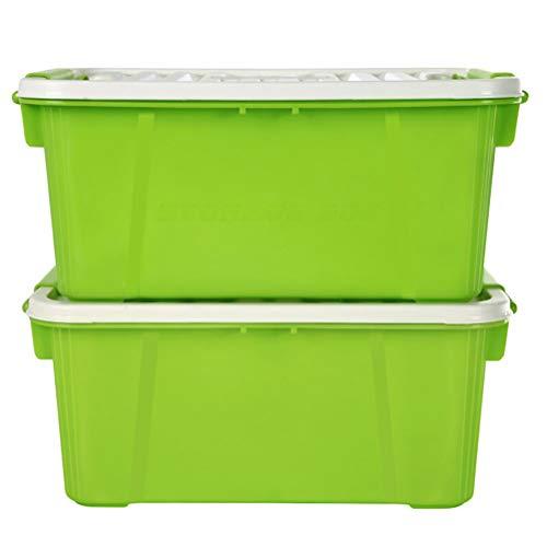 Goli-Storage Aufbewahrungsbox 2er-Set, stapelbar mit Griff 10 Liter, Kunststoff-Aufbewahrungsbox mit Deckel - wirklich nützliche Box