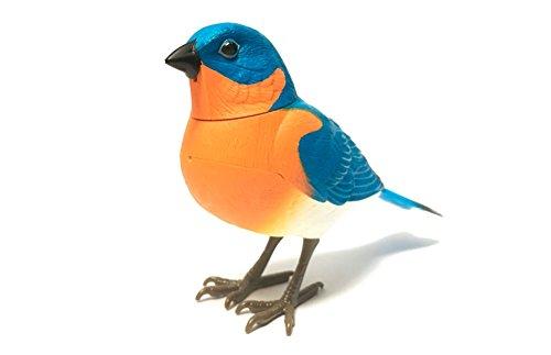 RCTecnic Pájaro Azul Cantarín ¡Se Activa por Movimiento! Mascota Interactiva | Pajaros Decorativos Animales Juguetes