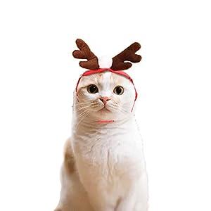 Kalolary Chien Chapeau de Père Noël Cadeaux de Noël pour Chat, Noël Animal Antler Chapeau pour Les Chats pour Chiens Party Vêtements, Accessoires Cosplays Halloween Noël Fêtes Costume