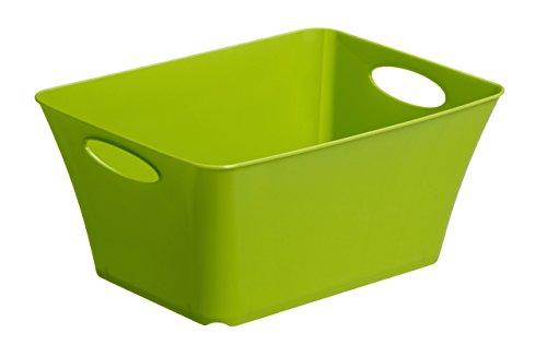 Rotho Aufbewahrungs-Box, Kunststoff, grün 5 l