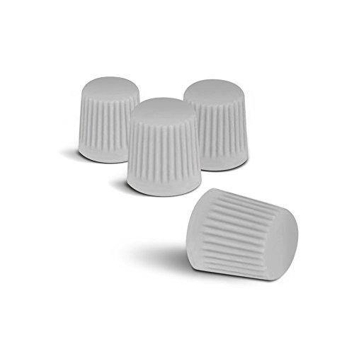 Preisvergleich Produktbild Farbige Ventilkappen (Silber) passend für alle PKW. Ein Highlight für jede Radkappe oder Radzierblende!