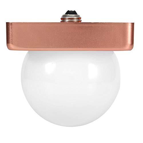 Riuty LED Globe Glühbirnen, E27 LED Glühbirne Soft White für Indoor Badezimmer Vanity Pendelleuchte 2er Pack(38W) (Globes Licht Für Vanity)