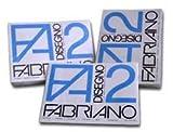Fabriano F2 06201516, Album da Disegno, Formato 24 x 33 cm, Fogli Lisci Riquadrati, Grammatura 110gr/m2, 20 Fogli