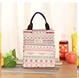 Fiesta DONGZHI Insulated Lunch Box Freezable Lunch Bag with Stick Closure Lunch Organizer