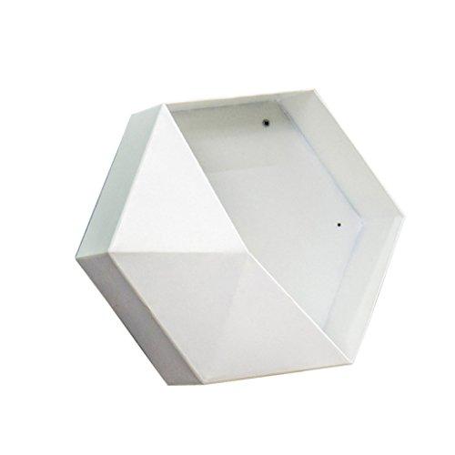 Weiß Manuelle Auswahl (non-brand Sharplace Deko Blumenkasten Untersetzer Balkonkasten Blumentopf Wand Ornament, Auswahl - Weiß 30cm)