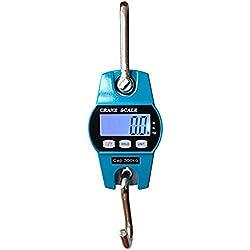 Escala de grua - TOOGOO(R)Mini escala de grua de gancho digital e industrial de 300kg/600lb