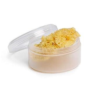 Suavinex 400025 Esponja Natural del Mar Pequeña Ideal para Recién Nacido con Caja para Guardar, Amarillo