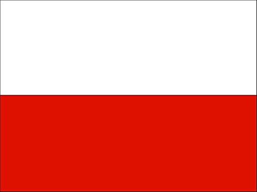 POLNISCHE FAHNE mit 2 Ösen 90x150cm Flagge Polen Hissflagge Hissfahne Fahnen (Polen Flaggen)