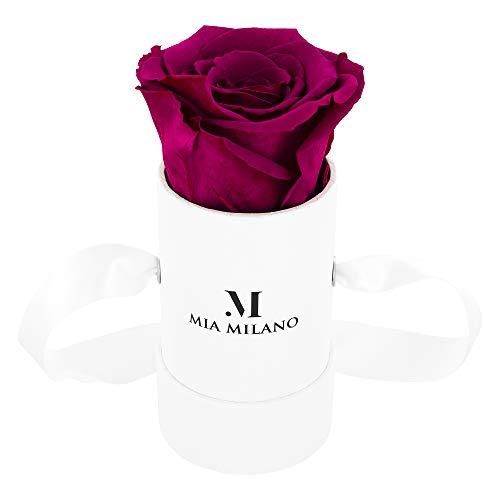 Mia Milano ® Rosenbox mit Infinity Rosen (Versand in neuer stabiler Kartonage) Flowerbox mit konservierten Blumen | 3 Jahre haltbar (Small - Hot Pink)