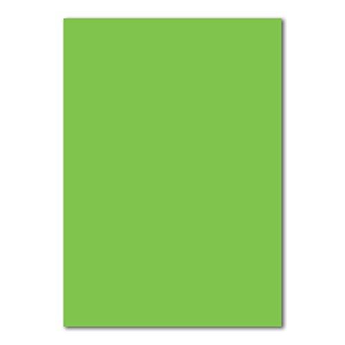 50x DIN A4 Papier Planobogen -Hellgrün - 160 g/m² - 21 x 29,7 cm - Bastelbogen Ton-Papier Fotokarton Bastel-Papier Ton-Karton - FarbenFroh®