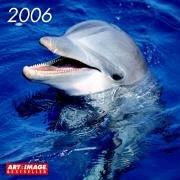 Art & Image Delfine 2006: Broschürenkalender