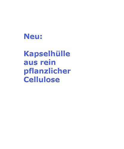 Leaky Gut, 120 Kps, vegetarische Kapselhülle, Inhaltsstoffe aus kontrolliert biologischem Anbau, deutsche Produktion