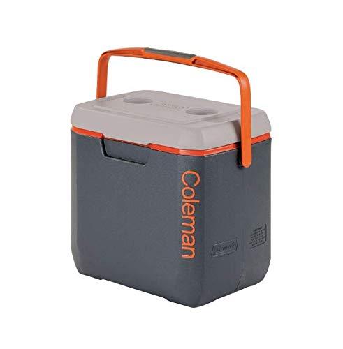 Coleman Kühlbox mit Isolierungsschaum, grau, 26 L…   00799360542083