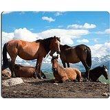 Luxlady Gaming Mousepad un allevamento di cavalli sul Malghe sullo sfondo di Snowy Peaks Image ID 7740524