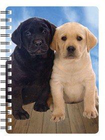 Labrador Welpen (schwarz und gelb) Hund Geschenk–Qualität Spiralbindung Notebook mit Atemberaubende 3D Front Cover
