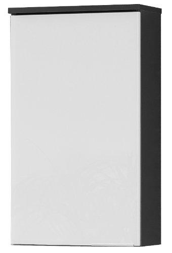 FACKELMANN Hängeschrank KARA / Badschrank mit Soft-Close-System / Maße (B x H x T): ca. 41 x 70 x 23 cm / hochwertiger Schrank fürs Bad / Türanschlag links / Korpus: Anthrazit / Front: lackiertes Glas in Weiß