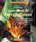Gesund wohnen mit Energiepflanzen