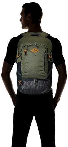 Best decathlon backpack in India 2020 Quechua 30 Ltrs Khaki Rucksack (8383598) Image 5