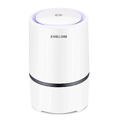 Luftreiniger mit True HEPA filter, RIGOGLIOSO Desktop-USB-Luftreiniger Ionisator mit LED-Nachtlicht I Eliminator für PM2.5 Zigarettenrauch, Allergie und Bakterien