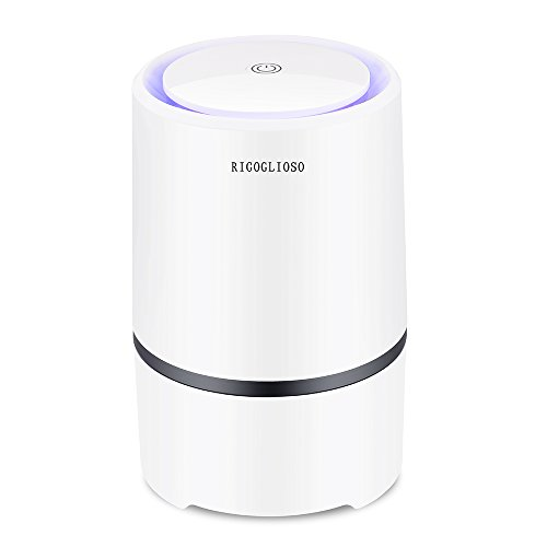 RIGOGLIOSO Portable Air Purifier for Home with True HEPA Filters, Desktop  USB Cleaner, Ionizer Freshener for Cigarette Smoke, Allergies, Bacteria,