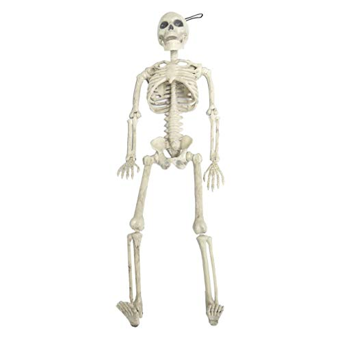 Horrible Halloween Skeleton Modell Skull Skeleton Halloween Hängen Requisiten (Bewegliche Halloween Requisiten)