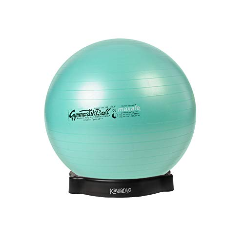 Gebraucht, Pezzi Original Pezziball MAXAFE 65 cm m. Ballschale gebraucht kaufen  Wird an jeden Ort in Deutschland