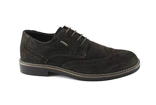 IGI & CO 86787 Chaussures élégantes Hommes de Brun café Broderie Anglaise SPACIUM Gore-tex