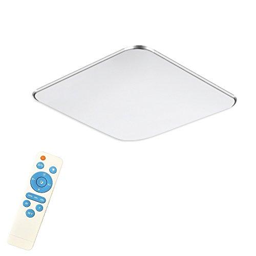 SAILUN 24W Dimmable Ultraplat LED Plafonnier moderne Lampe de couloir Cuisine de chambre à coucher Économie d'énergie lumière applique murale Couleur Argent (24W Argent Dimmable)