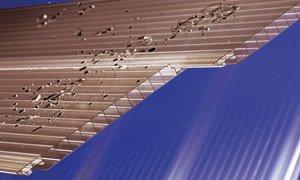 Polycarbonat Dachpaneele bronce easy-click plus Paneele 3500 x 230 x 16 mm