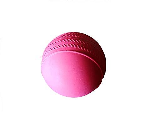 CE Rhino Rhino-42 Cricket Rubber Ball Stumper-Ruubber Red (Pack of 12 Balls)