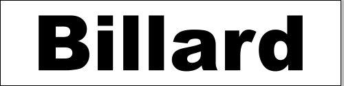 PUBLICIDAD LONA BILLAR–300CMX100CM–VLIESSTOFF-MARKT BANNER ANDAMIO